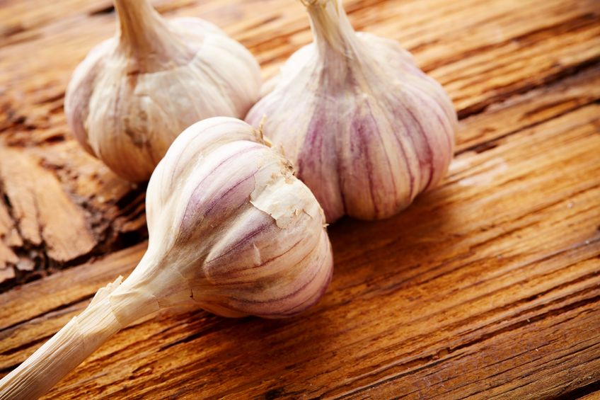Healing properties of garlic