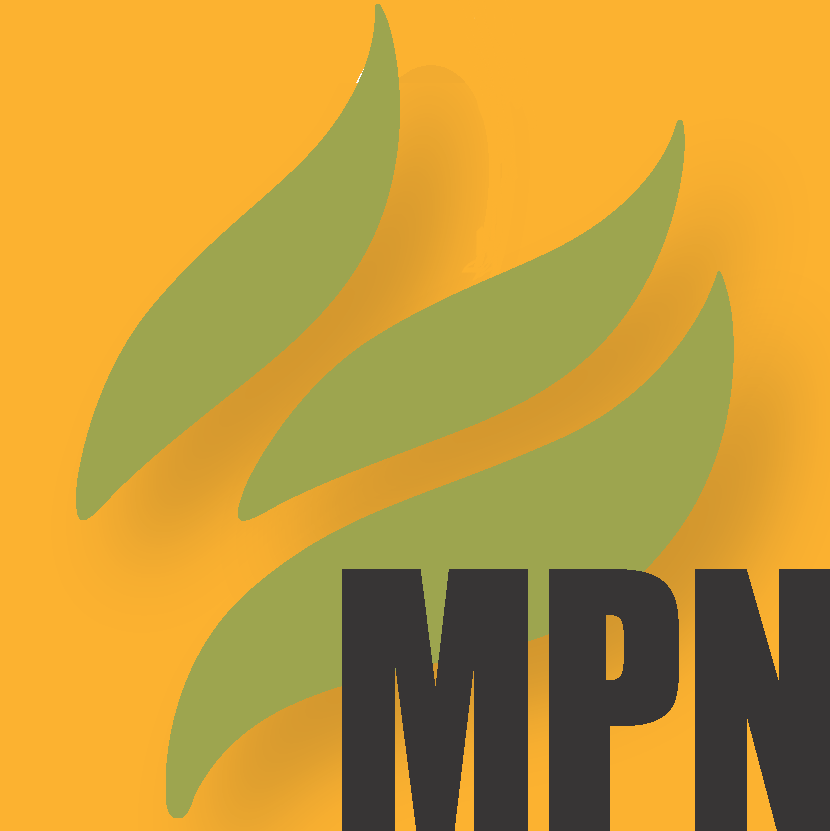 Mint Press News logo